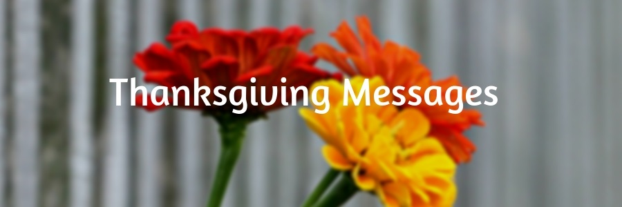 Thanksgiving Messages – for Family, Parents, Friends and Colleagues